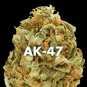 cherry-ak-47.jpg